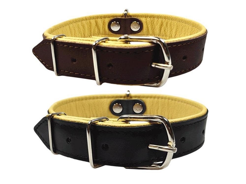 Geniune Leather dog collar