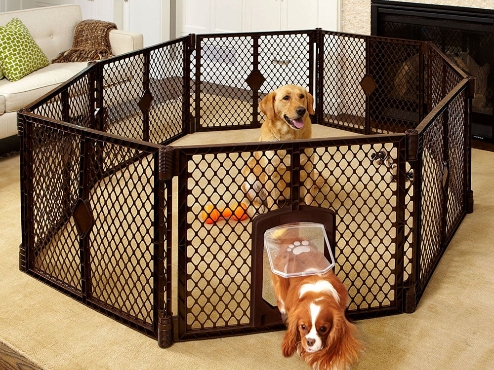 exercise pen is one of the things to prepare in getting a new puppy
