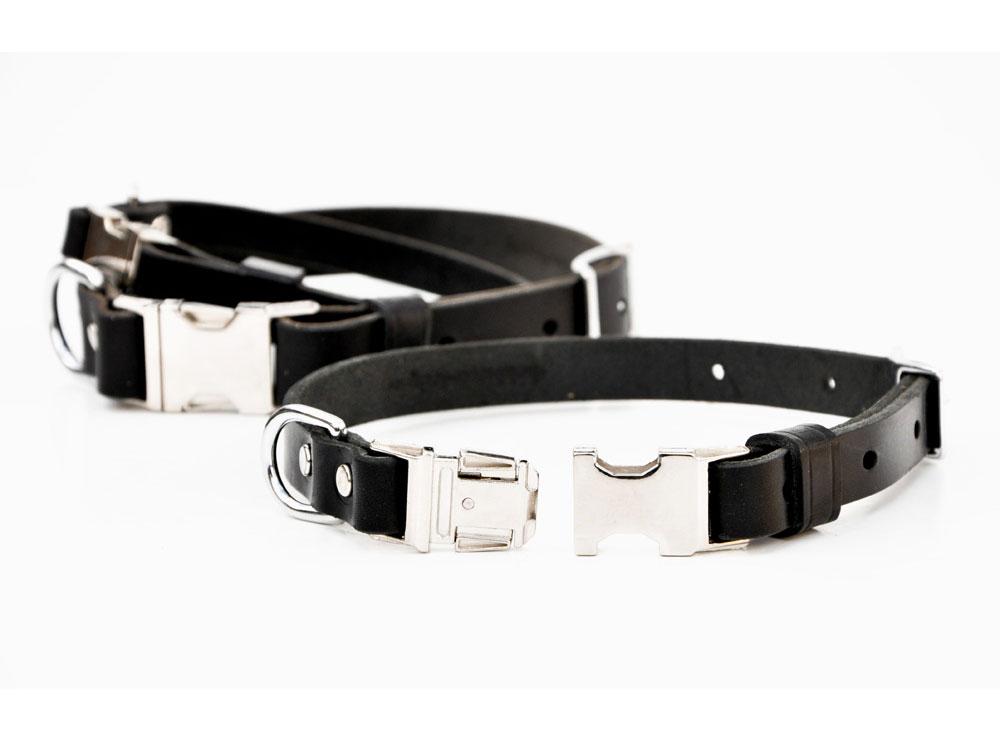Quick-Release Buckle Collar