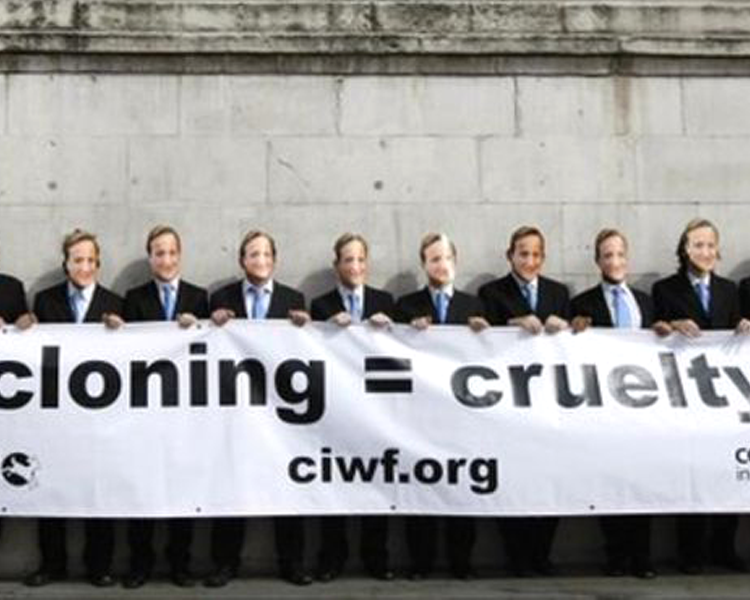 anti-animal cloning advocates protest