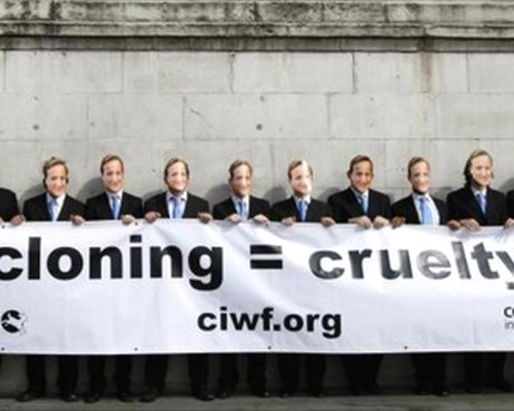 anti-animal cloning advocates protest