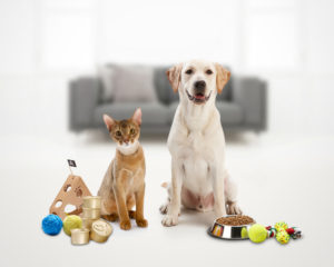 dog and cat with different kinds of food and stuff