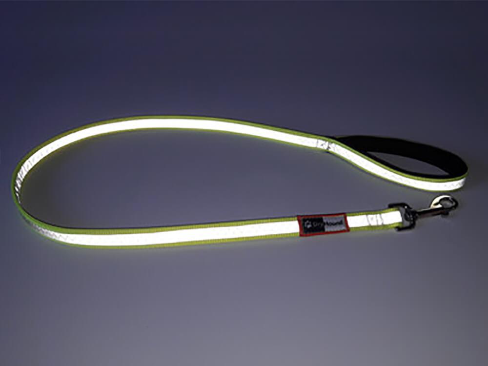 high visibility dog lead