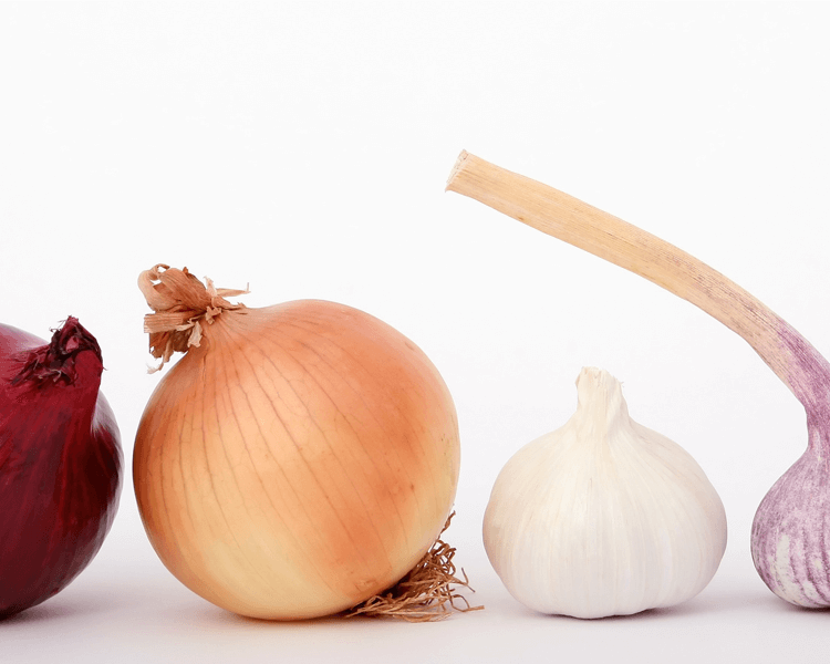 onions and garlic are harmful to dogs