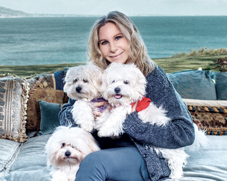 Barbra Streisand with her cloned pets