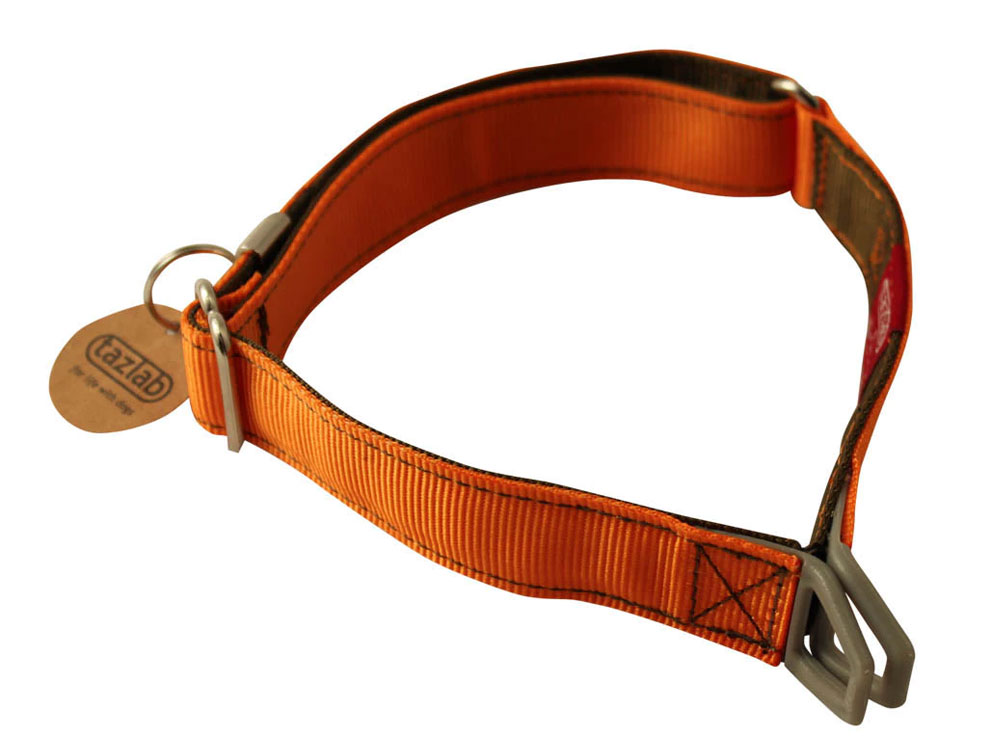 Stretch dog collar