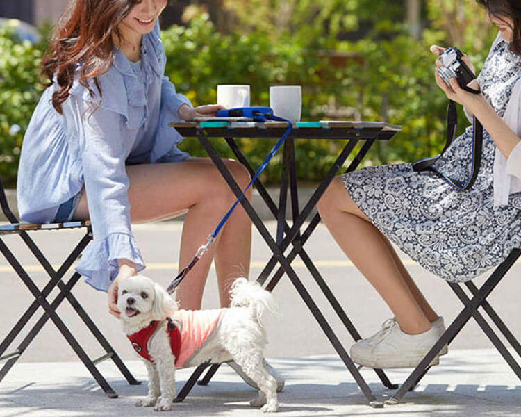 two woman sitting in a table with a dog