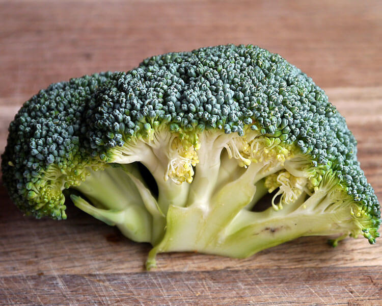 broccoli, which is good for dogs