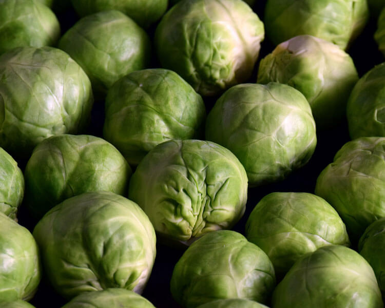brussel sprouts, which are good for dogs