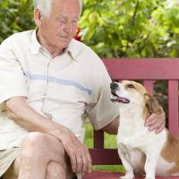 The 5 Times Pets Proved They're Good for Our Health