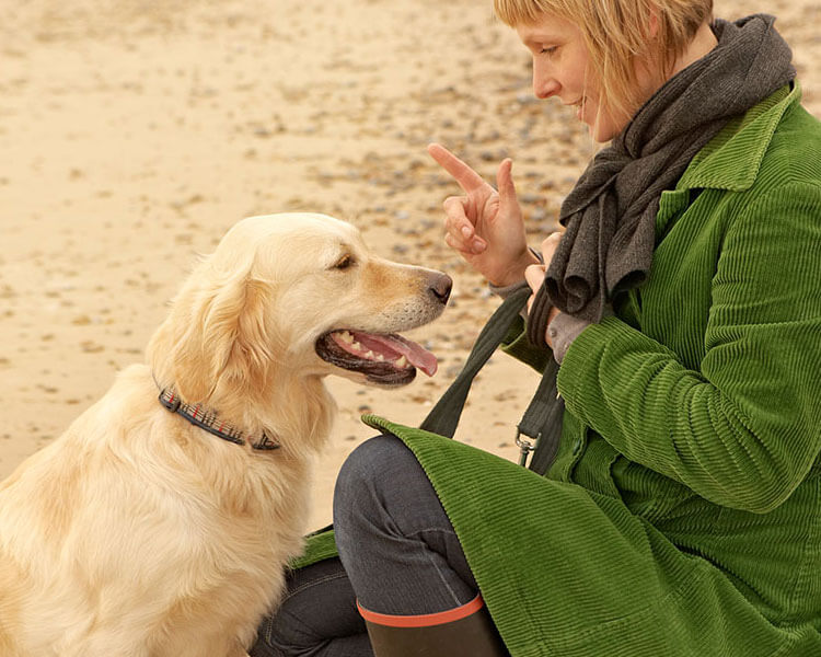 a woman commands her dog