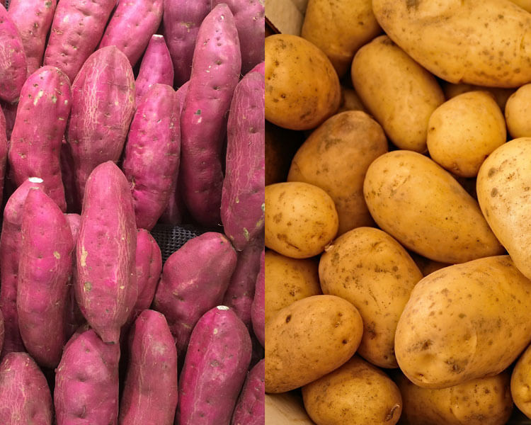 potatoes and sweet potatoes, which are good for dogs
