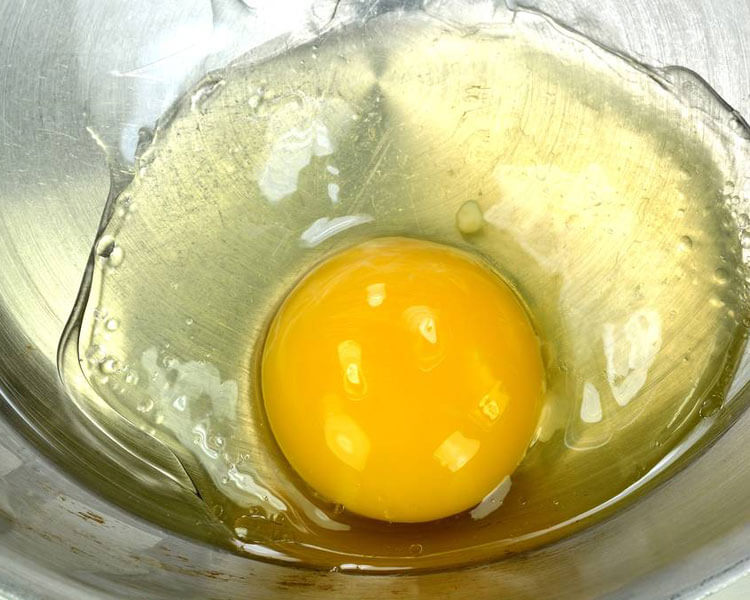 raw egg, which is harmful for cats