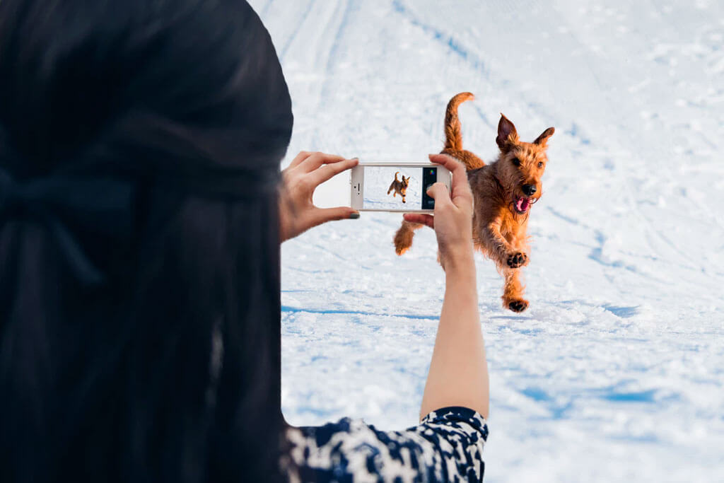 woman taking a picture of her dog running