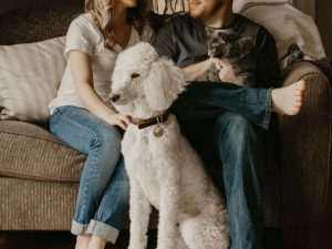 family with their cat and dogs