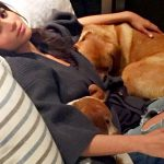 meghan markle with her dogs