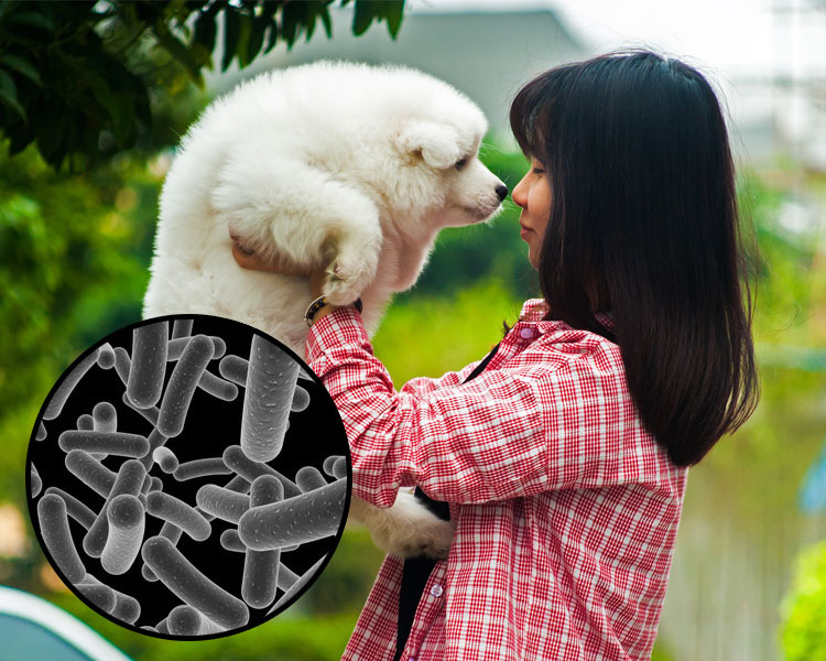 a girl exposed to microbes through a dog
