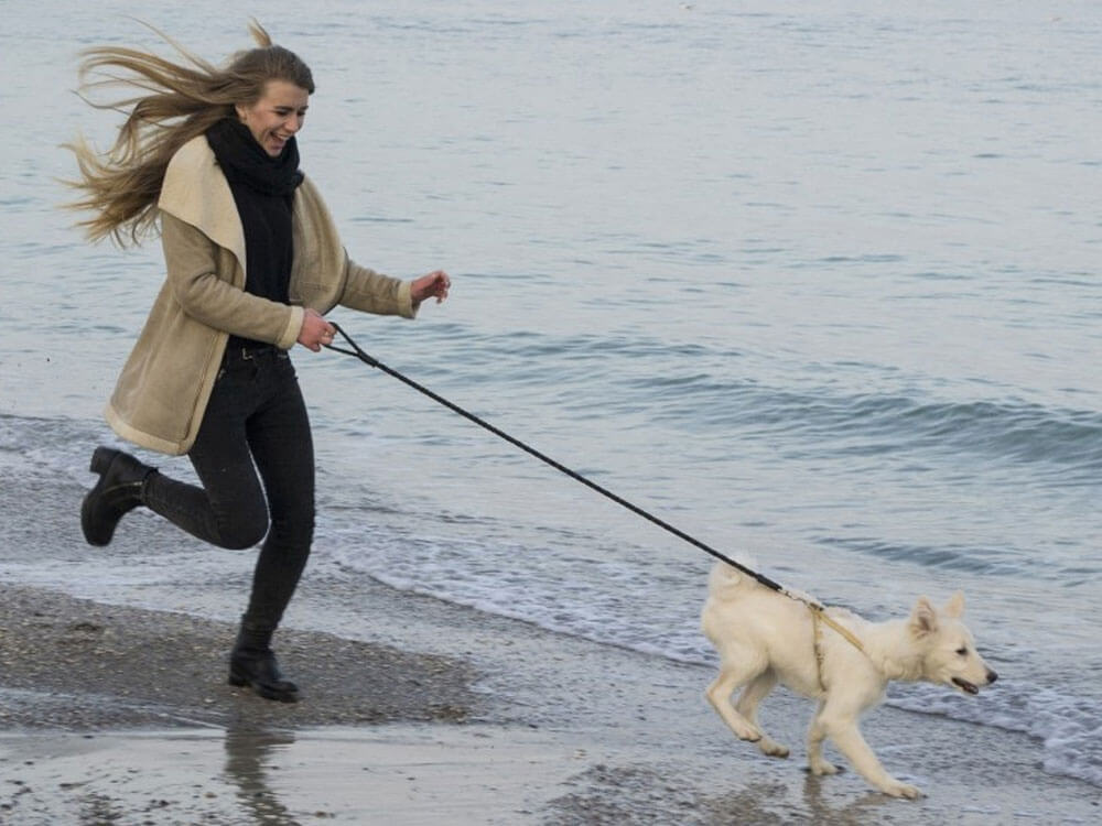 dog and owner running at the beach