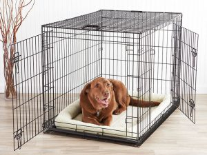 The 4 effective steps to fast puppy crate training