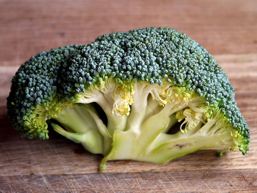 broccoli is a human food that can be eaten by cats
