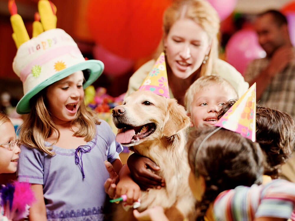 dog birthday party with kids
