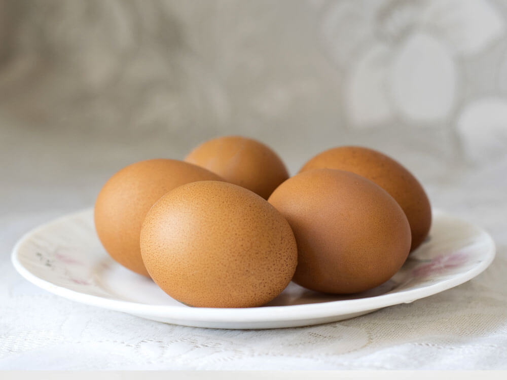 egg is a human food that can be eaten by cats