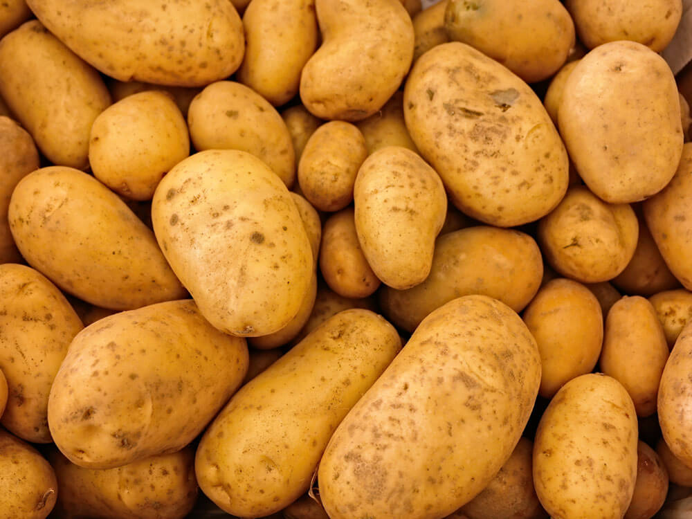 potato is a human food that can be eaten by cats