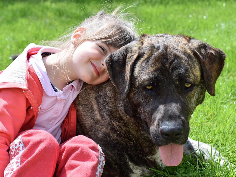 The 10 Best Dog Breeds for Children