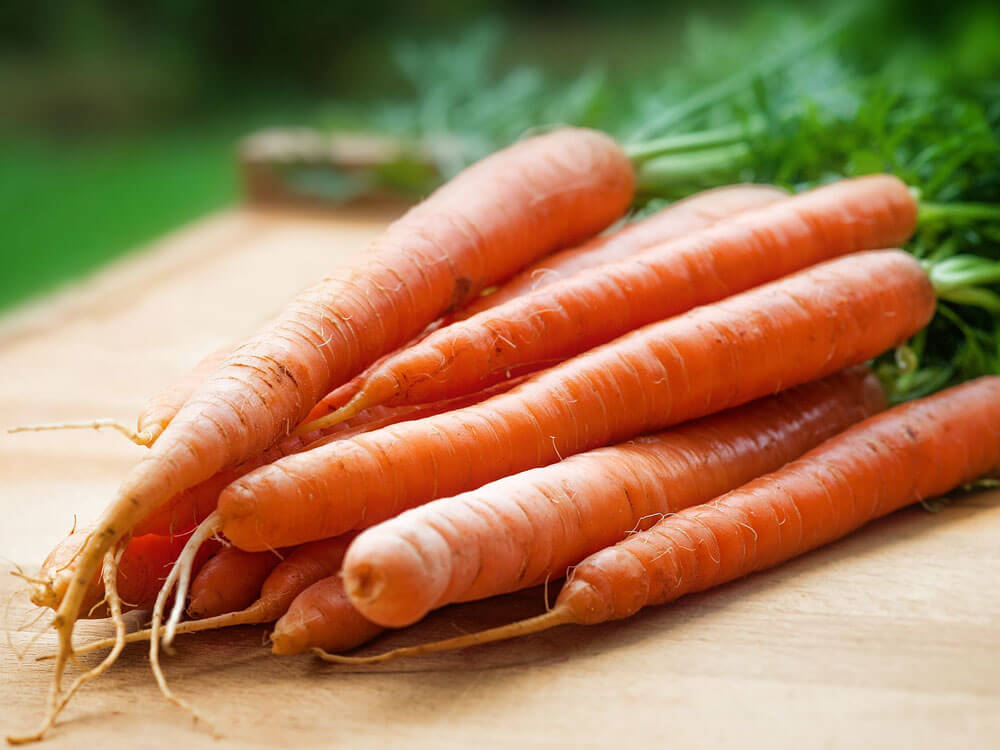 carrot, helps to get rid dog's bad breath