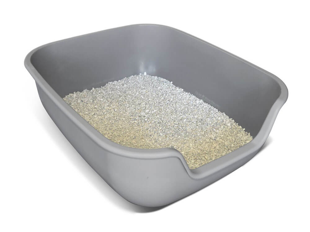 a big litter box that can be used for kittens for a long time
