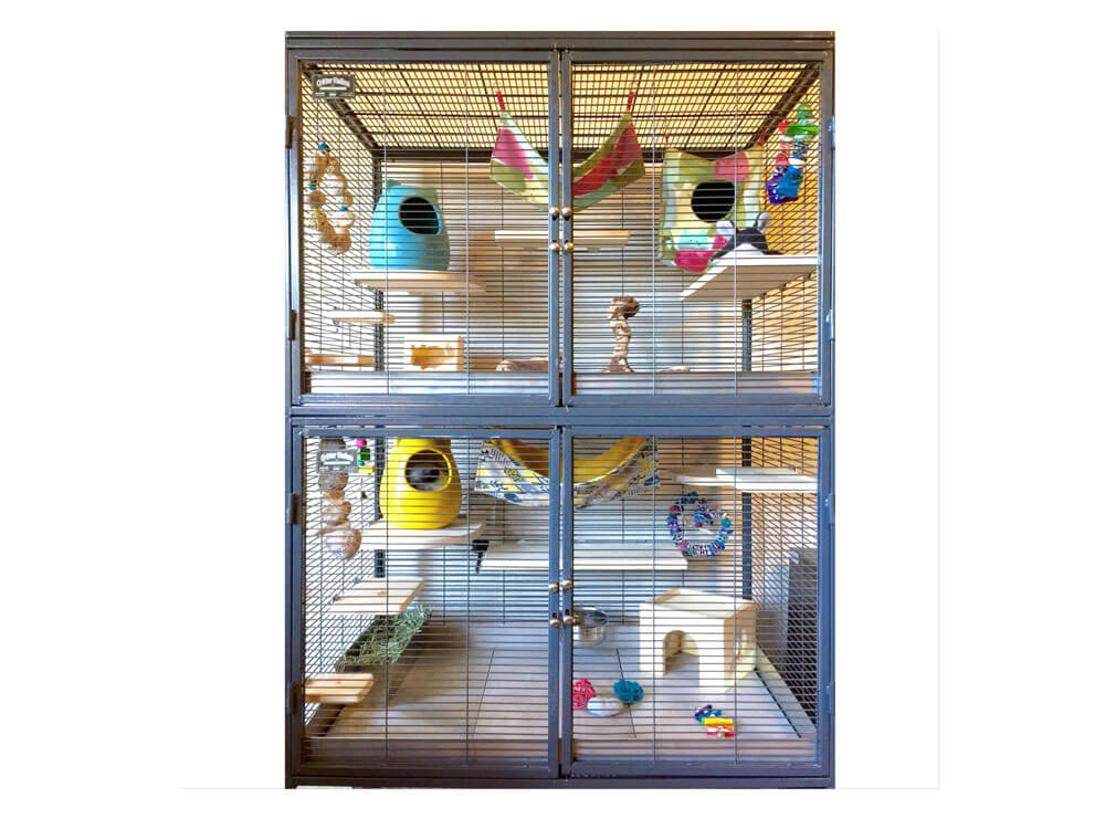 A tall and have the right materials in a cage for your chinchilla