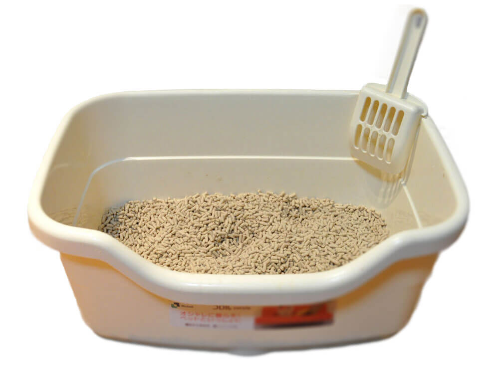 a kitty litter box with a non-clumping clay