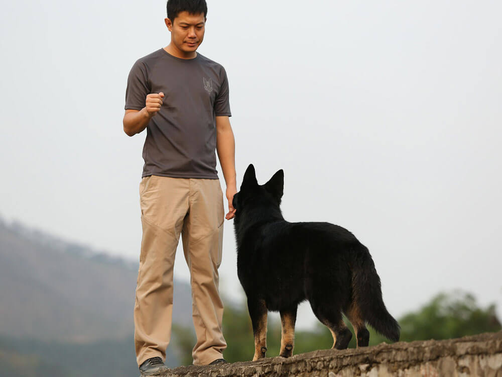 A dog and its owner in a one-on-one obedience training