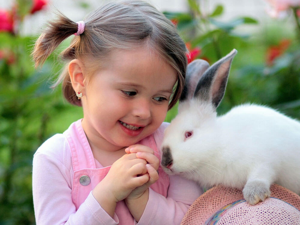 a child playing with the rabbit