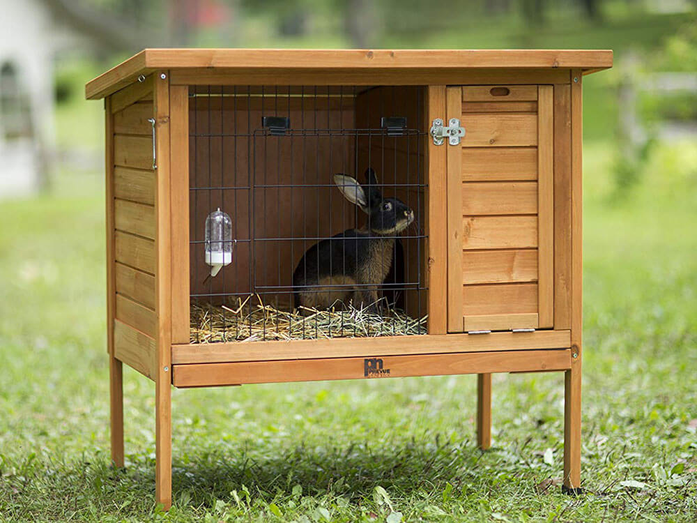 A rabbit cage with beddings and food