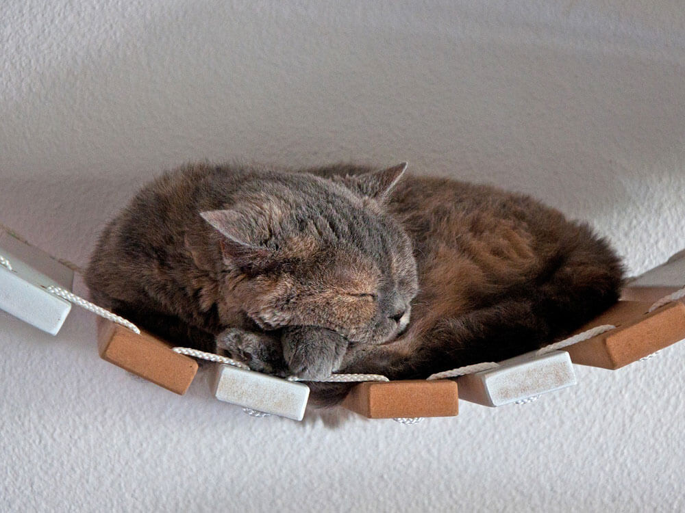 a cat sleeping soundly in a hanging wood decor