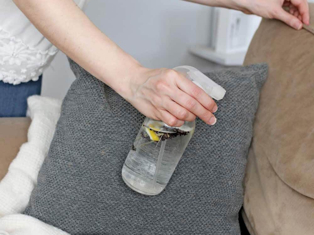 a woman using flea sprays to kill fleas