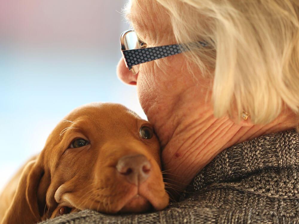 a puppy warmly hugged by a woman