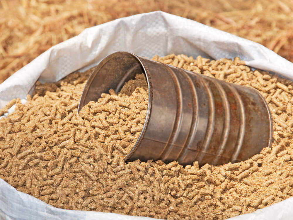 a horse supplement for additional nutrients