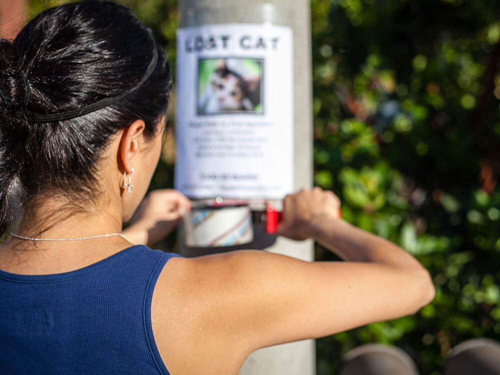 a woman sticking a flyer for her missing cat