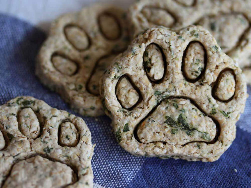mind dog biscuit, an easy homemade treat for dogs