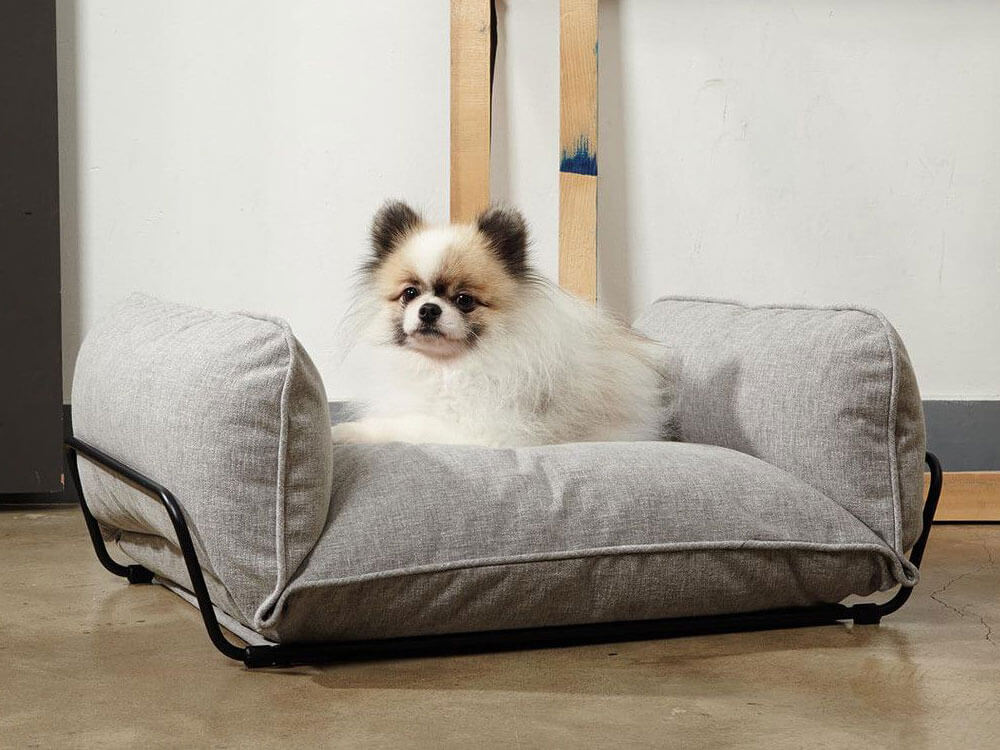 a modern pet bed, perfect gift for dogs this holiday season