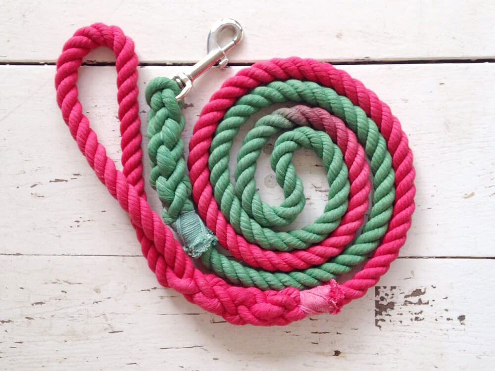 an ombre dog leash perfect for the christmas season