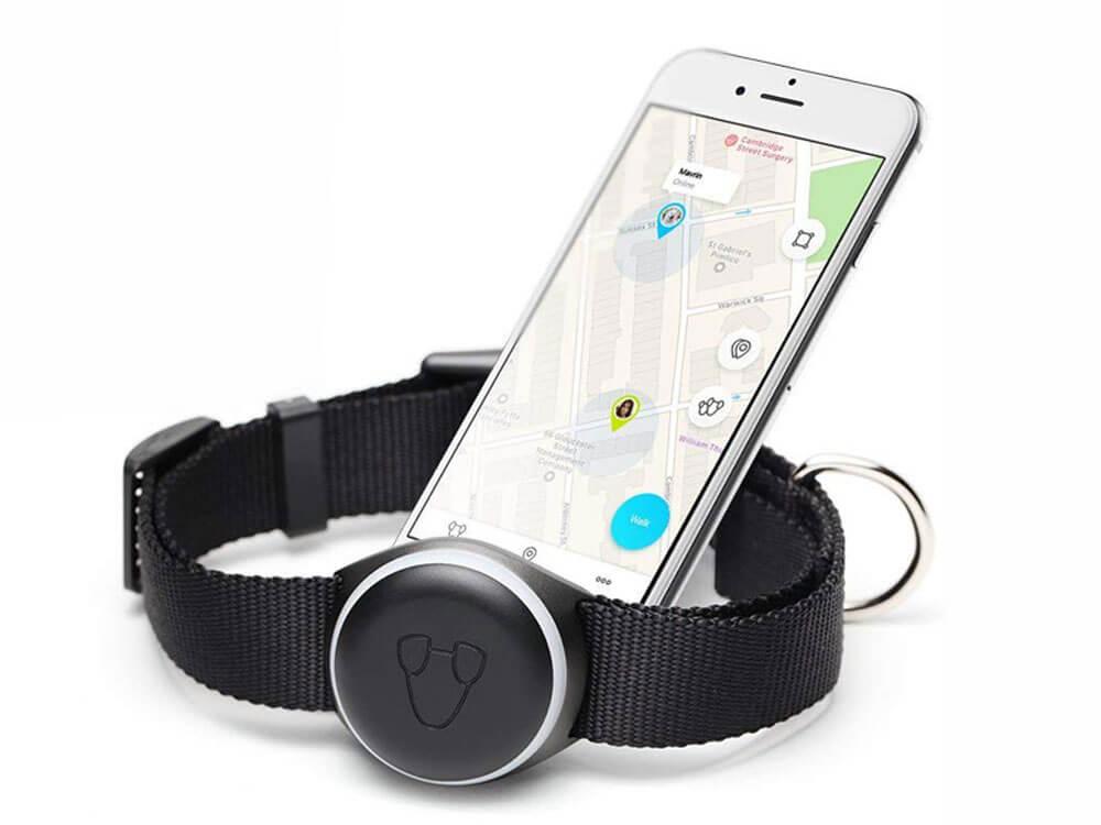 a black color pet tracker device