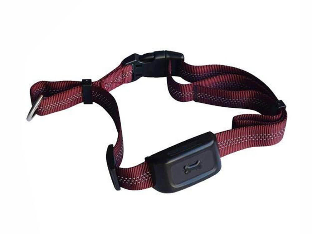 a red color pet tracker device