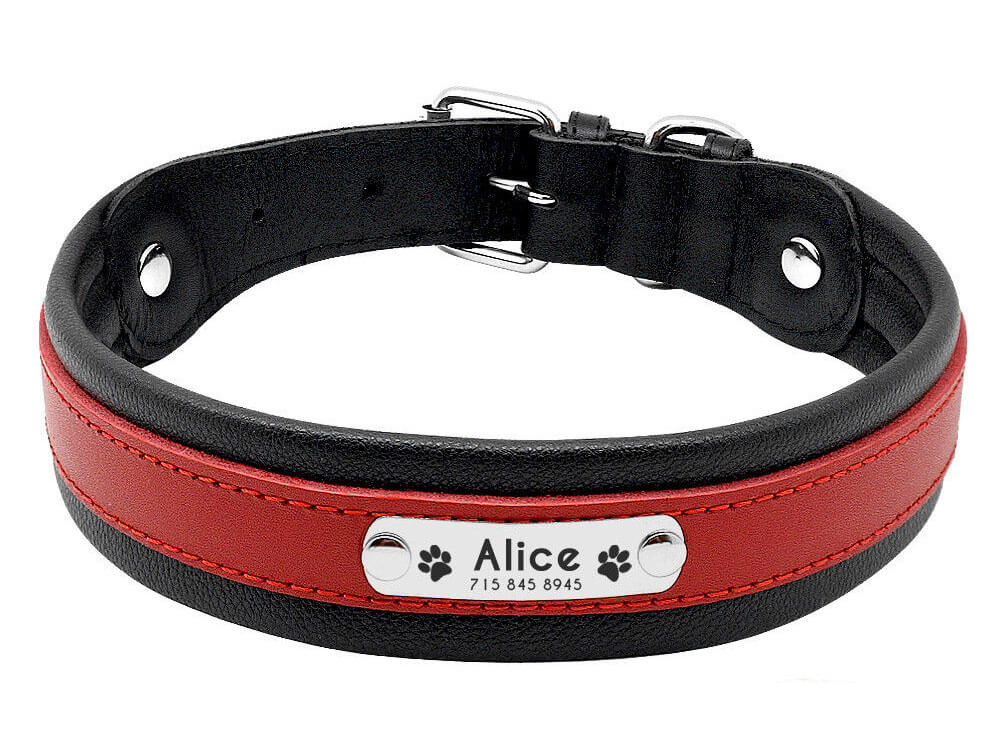 a collar with a pet name