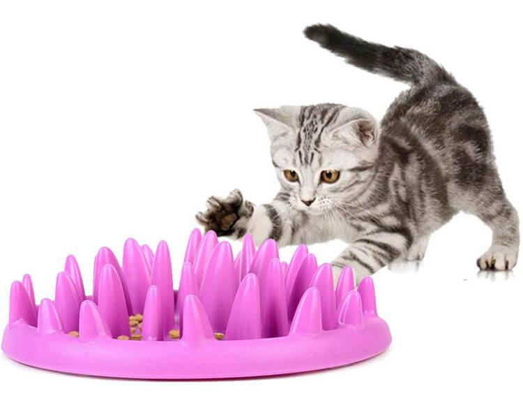 Catch Interactive Cat Feeder
