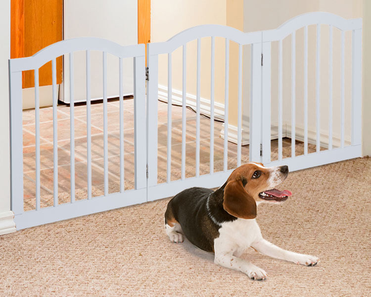 a barrier used for a dog's area