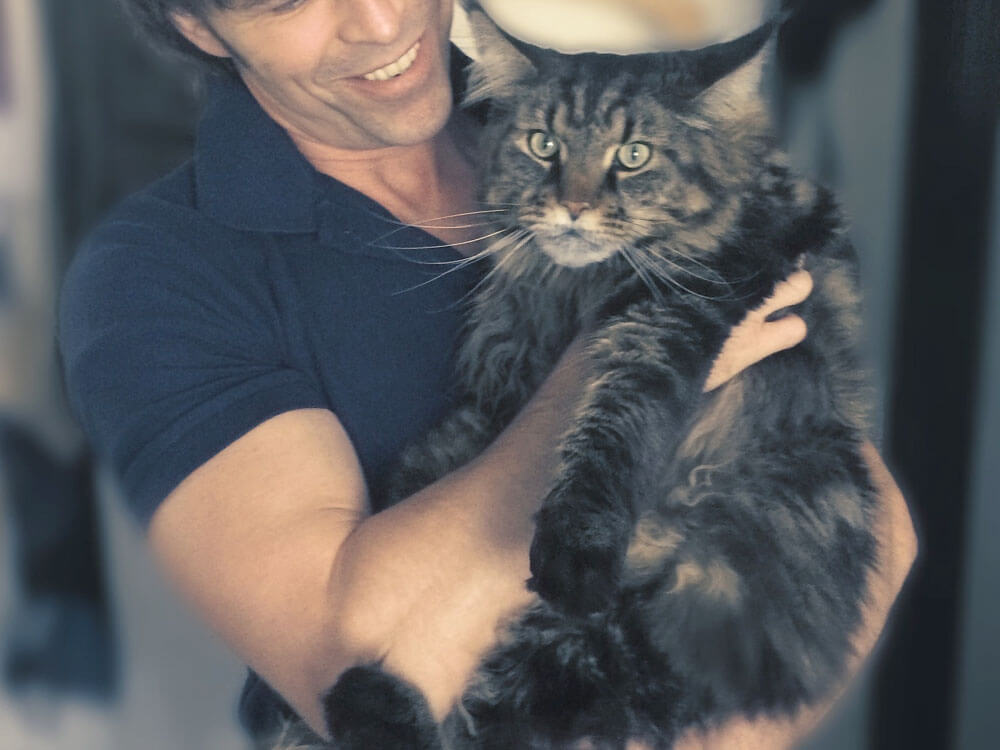a black, giant Maine coon cat in its owner's arms