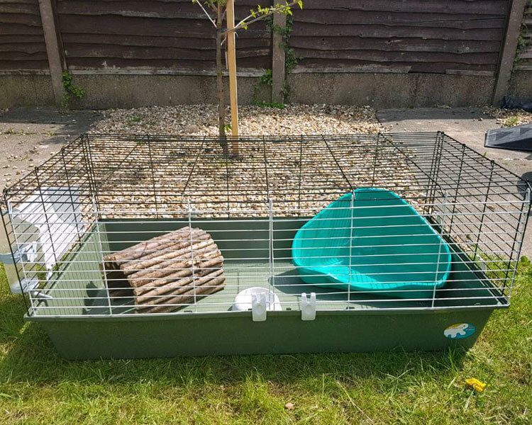 cage with a litter tray inside